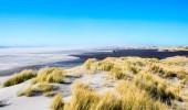 Neuseeland I Farewell Spit